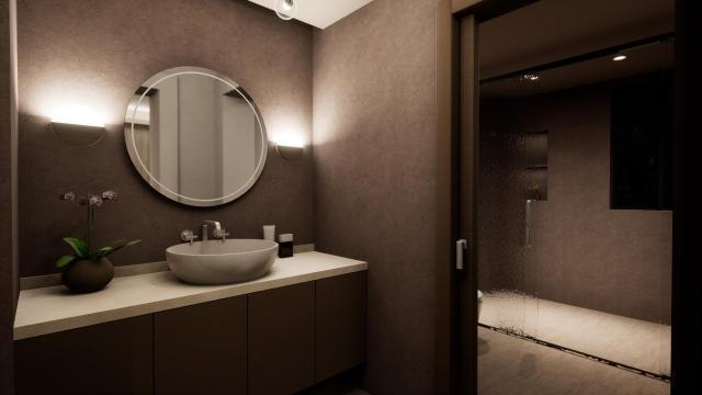 客卫生间装饰造型(含主灯)灯光设计