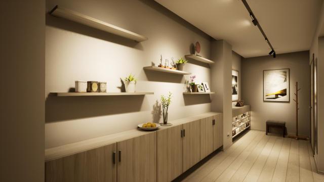 入户走廊简洁功能(无主灯)灯光设计