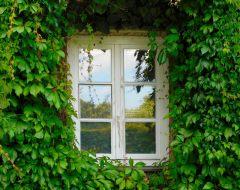 玻璃窗如何给建筑带来了光?这里有你不知道的玻璃窗发展史!
