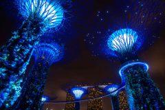 景观照明设计需注意的几个问题 景观照明常用灯具有哪些
